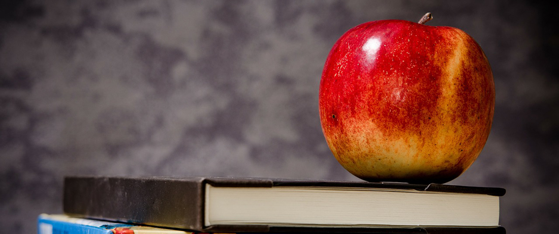 Apple above the Book