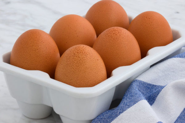 Protein Myths and Facts