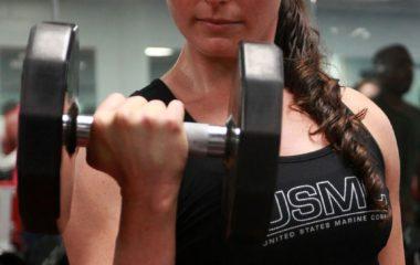 Muscle Development Essentials